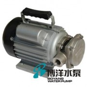 WCB型不锈钢卫生级齿轮泵 食品级电动油泵 食品级齿轮泵