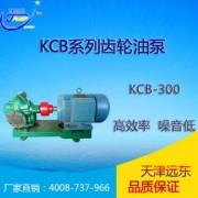 天津远东 KCB-300齿轮油泵 润滑油输送泵 远东齿轮泵 输油泵